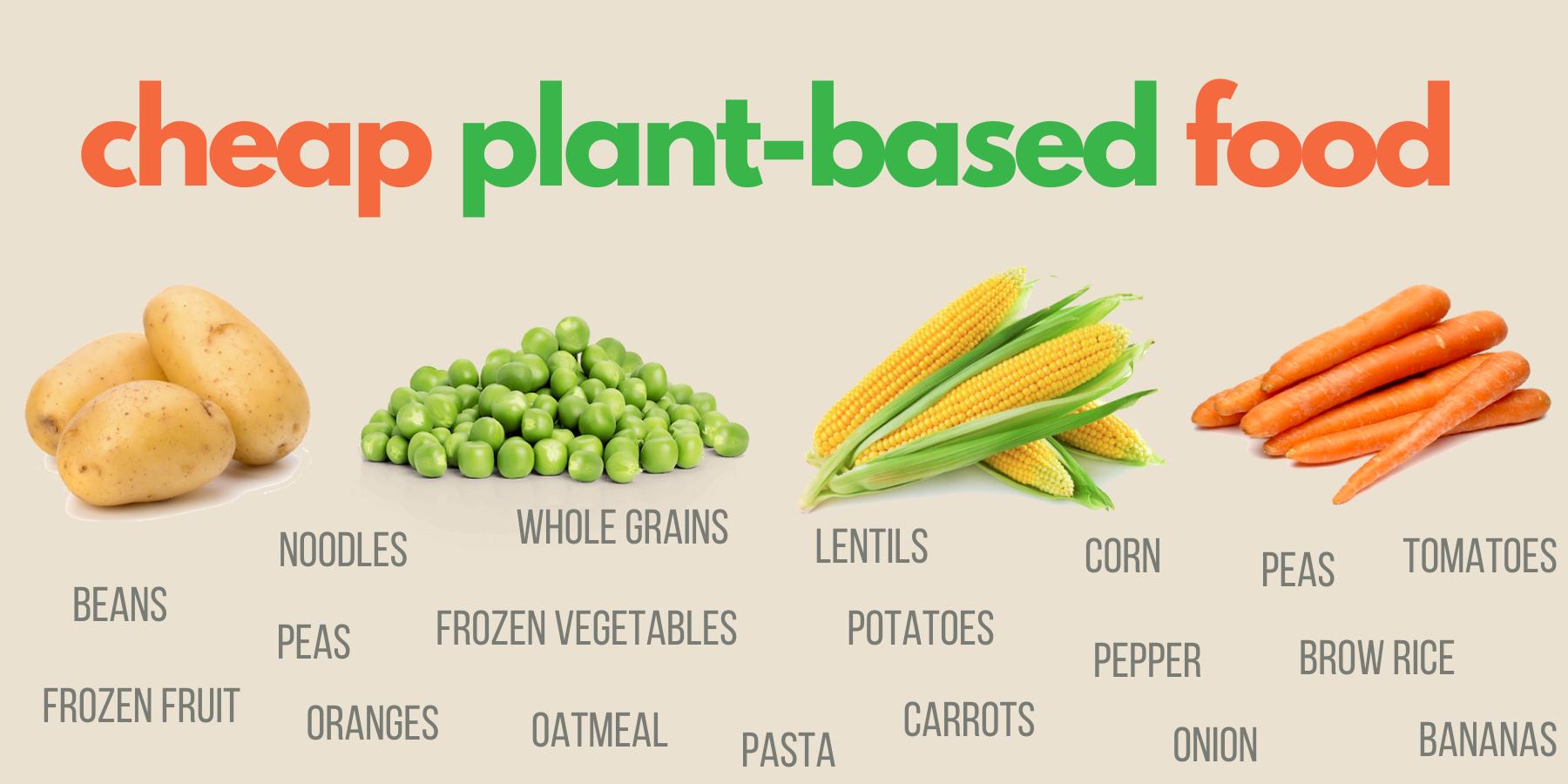 Cheap plant-based food list ideas